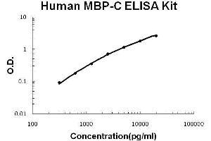 ELISA image for MBL2 ELISA Kit (Mannose-Binding Lectin (Protein C) 2, Soluble) (ABIN2859302)