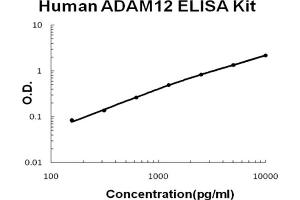 Image no. 1 for ADAM Metallopeptidase Domain 12 (ADAM12) ELISA Kit (ABIN6720375)