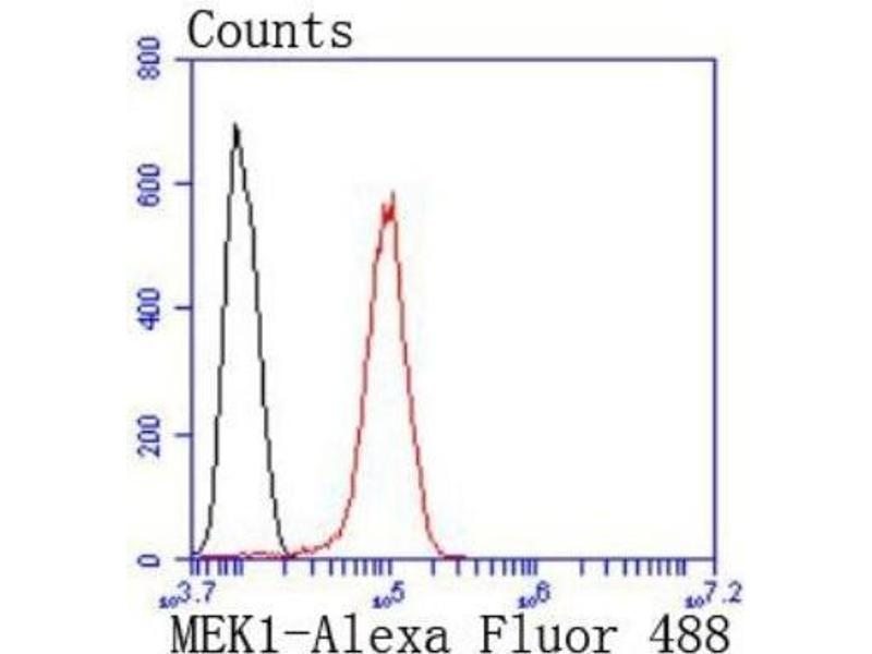 Flow Cytometry (FACS) image for anti-Mitogen-Activated Protein Kinase Kinase 1 (MAP2K1) (AA 1-100) antibody (ABIN5950417)