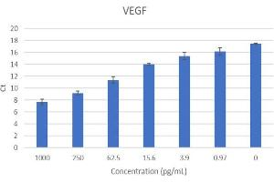 Image no. 3 for Vascular Endothelial Growth Factor (VEGF) IQ-ELISA Kit (ABIN5680029)