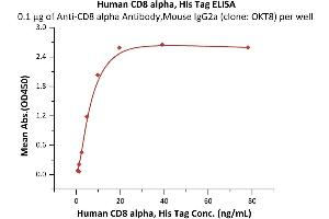 Image no. 1 for CD8a Molecule (CD8A) (AA 22-182) (Active) protein (His tag) (ABIN7013444)