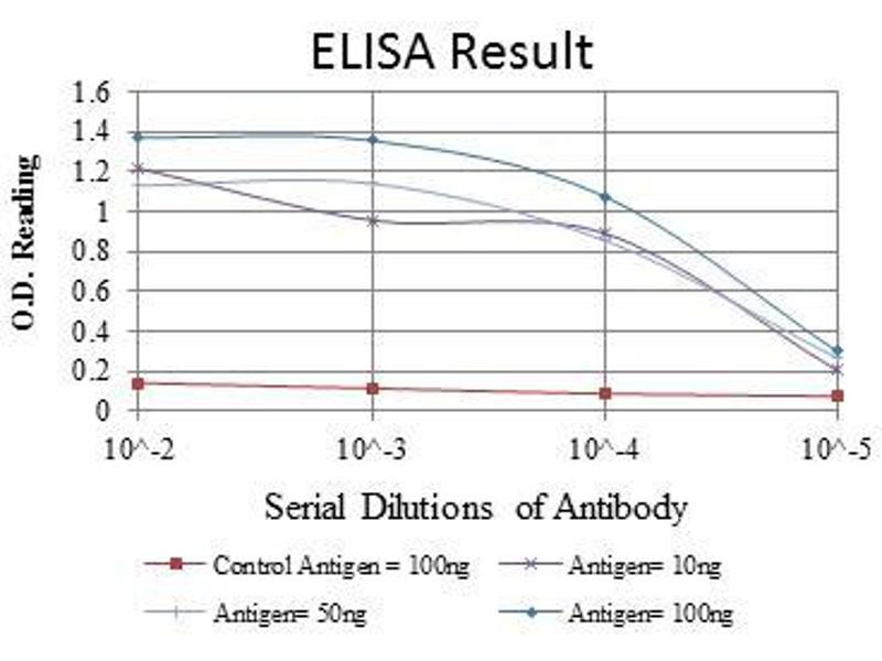 ELISA image for anti-Lamin A/C (LMNA) antibody (ABIN969260)