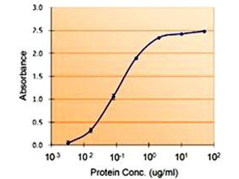 image for anti-serpin Peptidase Inhibitor, Clade E (Nexin, Plasminogen Activator Inhibitor Type 1), Member 1 (SERPINE1) antibody (ABIN547429)