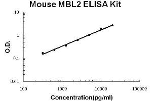 ELISA image for MBL2 ELISA Kit (Mannose-Binding Lectin (Protein C) 2, Soluble) (ABIN2859303)