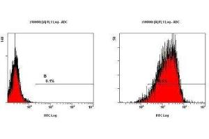 Flow Cytometry (FACS) image for anti-Integrin alpha M (ITGAM) (AA 500-600), (Internal Region) antibody (ABIN258322)