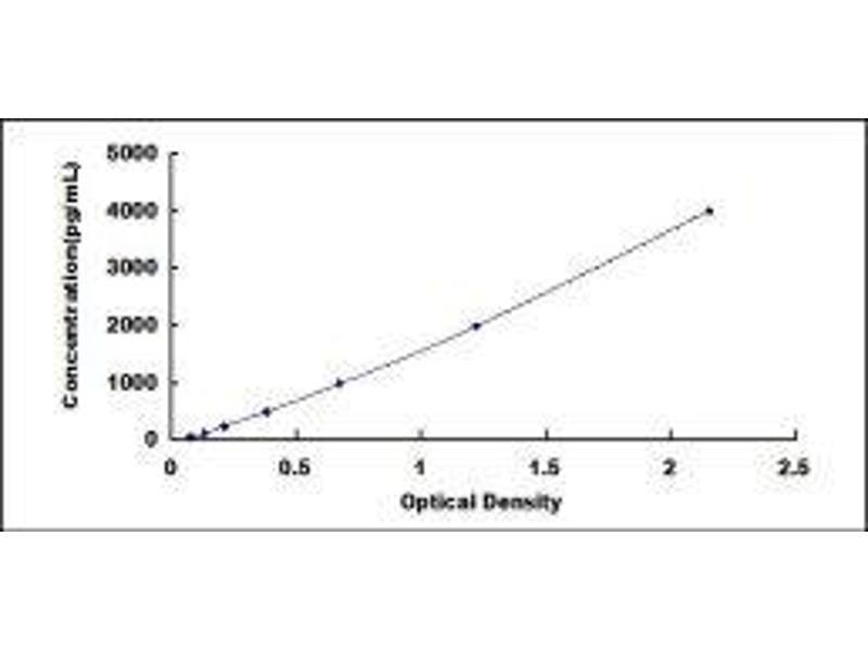 Fibroblast Growth Factor 1 (Acidic) (FGF1) ELISA Kit