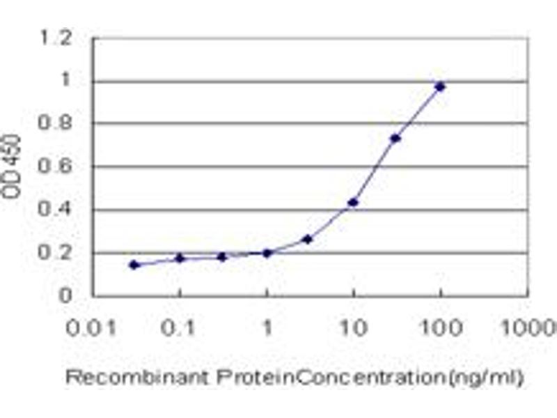 ELISA image for anti-Calreticulin 3 (CALR3) (AA 21-384), (full length) antibody (ABIN530566)