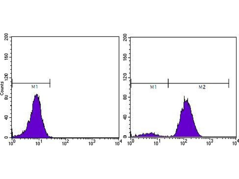 Flow Cytometry (FACS) image for anti-Prostate Specific Antigen antibody (PSA) (AA 26-251) (ABIN969369)