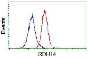 Image no. 4 for anti-Retinol Dehydrogenase 14 (All-Trans/9-Cis/11-Cis) (RDH14) antibody (ABIN1500656)