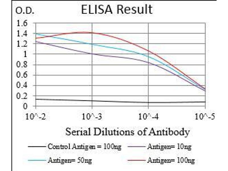 Image no. 2 for anti-Protein Phosphatase 1, Regulatory (Inhibitor) Subunit 1B (PPP1R1B) (AA 95-204) antibody (ABIN1724929)