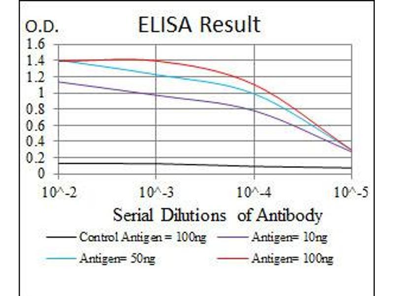 ELISA image for anti-Mitogen-Activated Protein Kinase Kinase 7 (MAP2K7) antibody (ABIN1108128)