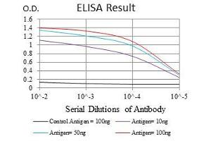 ELISA image for anti-Ubiquitin B antibody (UBB) (ABIN969573)