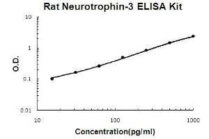 ELISA image for Neurotrophin 3 ELISA Kit (NTF3) (ABIN411340)