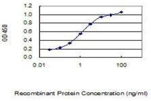 Image no. 4 for anti-CAMP Responsive Element Modulator (CREM) (AA 201-300) antibody (ABIN560468)