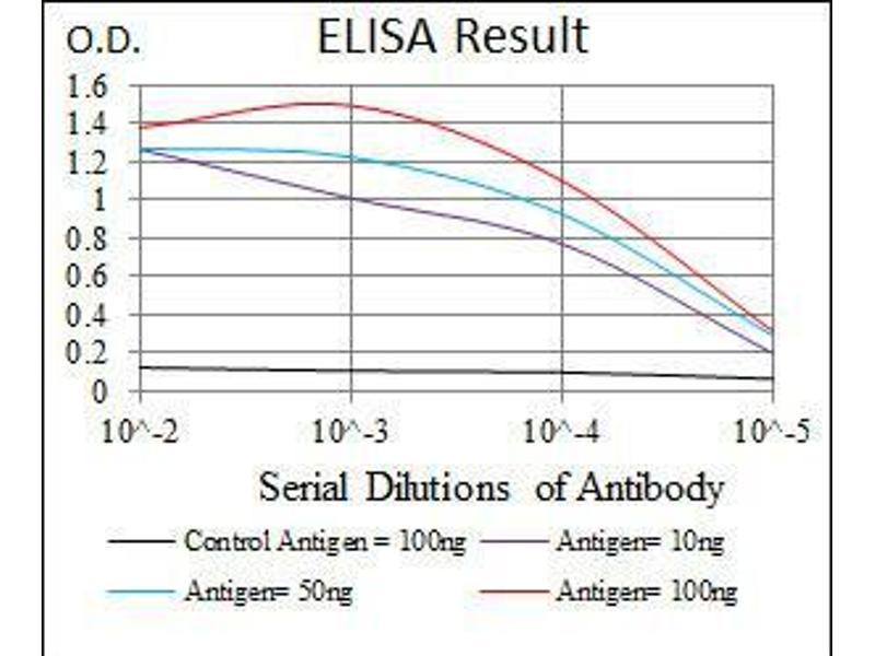 ELISA image for anti-Sonic Hedgehog (SHH) (AA 26-161) antibody (ABIN4881046)