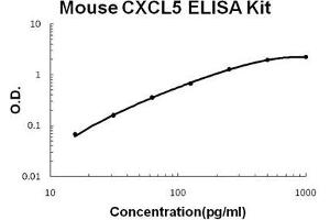 Image no. 1 for Chemokine (C-X-C Motif) Ligand 5 (CXCL5) ELISA Kit (ABIN1672835)