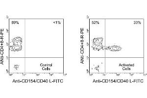 Flow Cytometry (FACS) image for anti-CD40 Ligand antibody (CD40LG)  (FITC) (ABIN370946)