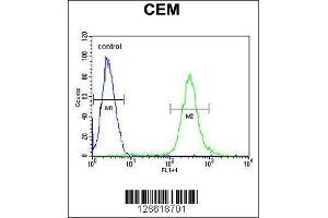 Flow Cytometry (FACS) image for anti-ATF7IP2 antibody (Activating Transcription Factor 7 Interacting Protein 2) (AA 318-347) (ABIN654466)