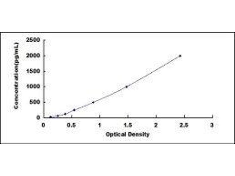S100 Calcium Binding Protein B (S100B) ELISA Kit (4)