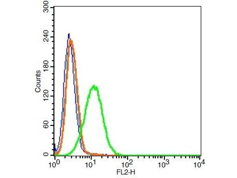 Flow Cytometry (FACS) image for anti-FLT4 antibody (Fms-Related Tyrosine Kinase 4) (AA 910-960) (ABIN678578)