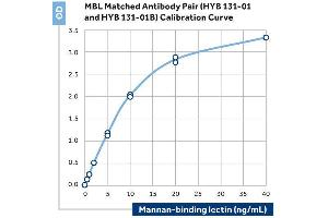 ELISA image for anti-Mannose-Binding Lectin (Protein C) 2, Soluble (MBL2) antibody (ABIN2192483)