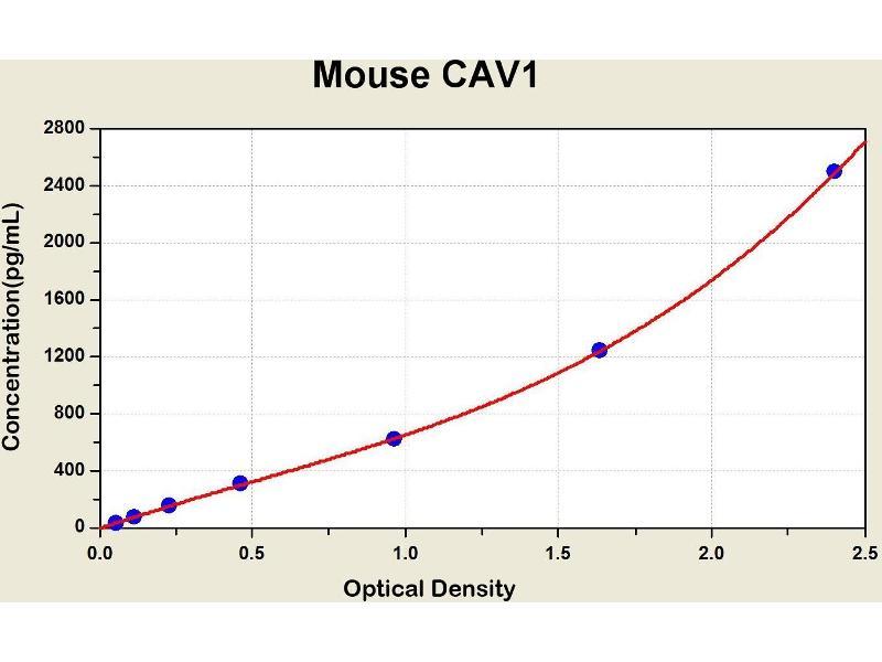 Caveolin 1, Caveolae Protein, 22kDa (CAV1) ELISA Kit
