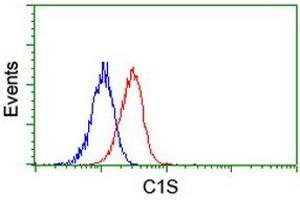 Image no. 2 for anti-Complement Component 1, S Subcomponent (C1S) antibody (ABIN1497568)