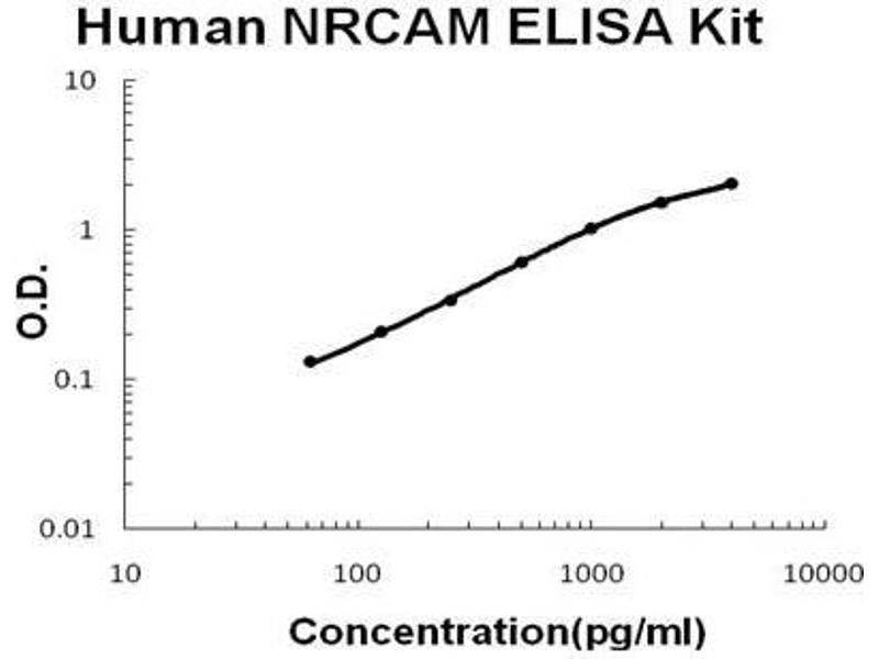 Neuronal Cell Adhesion Molecule (NRCAM) ELISA Kit