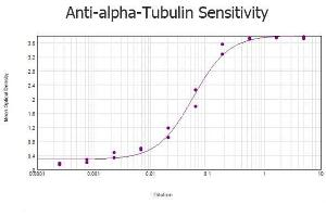 ELISA image for anti-alpha Tubulin (TUBA1) (Internal Region) antibody (ABIN129653)