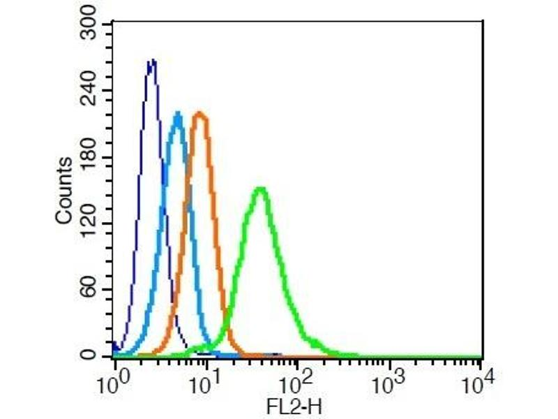 Flow Cytometry (FACS) image for anti-TNF Receptor-Associated Factor 2 (TRAF2) (AA 460-498) antibody (ABIN673479)