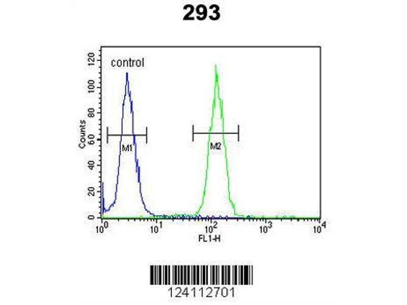 Flow Cytometry (FACS) image for anti-Nuclear Receptor Coactivator 7 (NCOA7) (N-Term) antibody (ABIN653488)