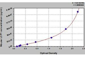 Image no. 1 for Lymphocyte Cytosolic Protein 1 (LCP1) ELISA Kit (ABIN6975073)