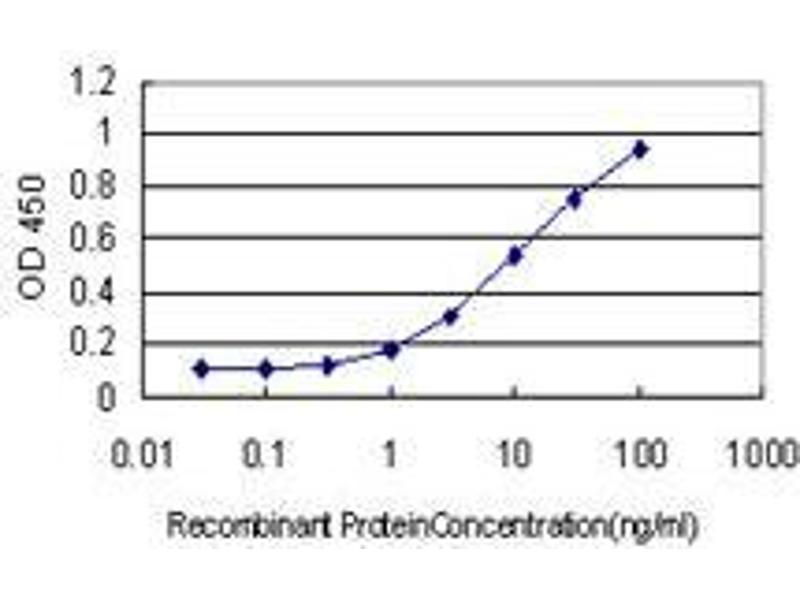 Immunohistochemistry (IHC) image for anti-Hect Domain and RLD 3 (HERC3) (AA 1-110) antibody (ABIN393576)