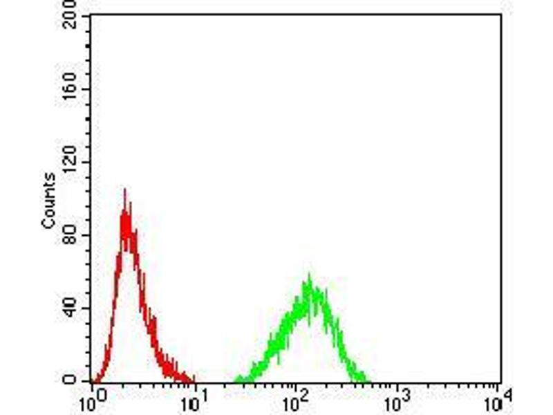 Flow Cytometry (FACS) image for anti-Lamin B2 (LMNB2) (AA 401-600) antibody (ABIN5542337)
