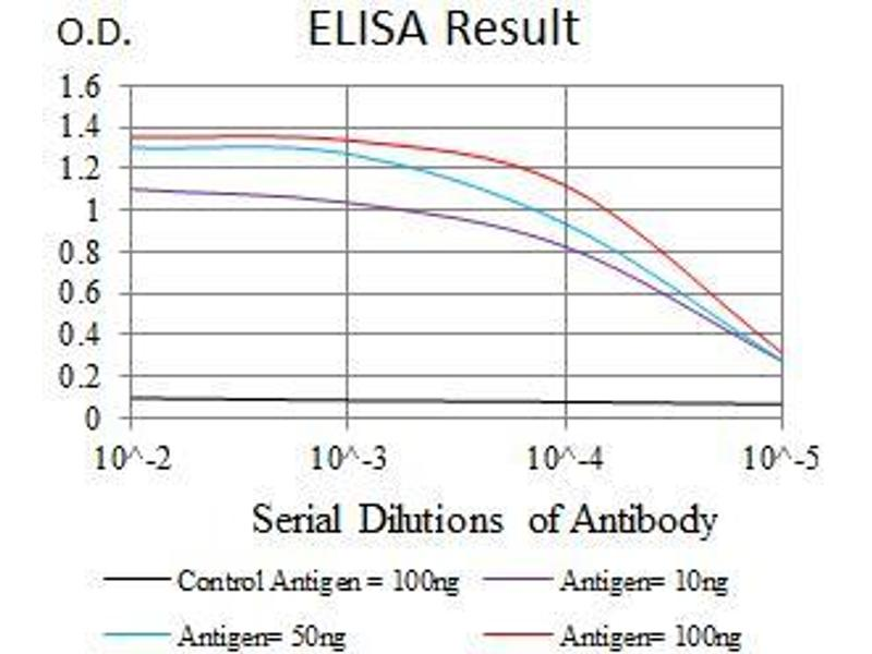 ELISA image for anti-MAPK14 antibody (Mitogen-Activated Protein Kinase 14) (AA 299-360) (ABIN1724830)