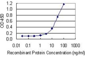 Image no. 1 for anti-Polymerase (RNA) Mitochondrial (DNA Directed) (POLRMT) (AA 1121-1230) antibody (ABIN519035)