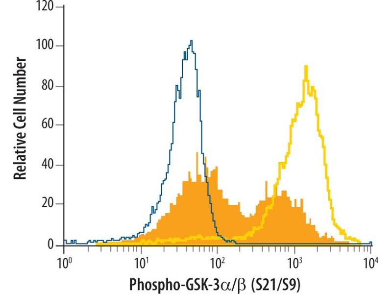Flow Cytometry (FACS) image for anti-GSK3 alpha antibody (Glycogen Synthase Kinase 3 alpha) (pSer9) (ABIN4900620)