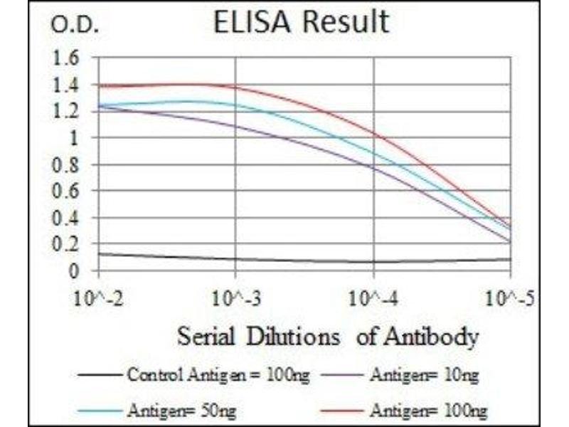 ELISA image for anti-Heat Shock Transcription Factor 4 (HSF4) antibody (ABIN4319945)