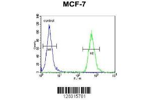 Image no. 1 for anti-Tocopherol (Alpha) Transfer Protein-Like (TTPAL) (AA 204-233), (C-Term) antibody (ABIN651357)