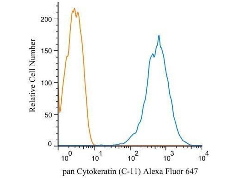 Intracellular Flow Cytometry (ICFC) image for anti-Cytokeratin 1 (KRT1) antibody (ABIN4302136)
