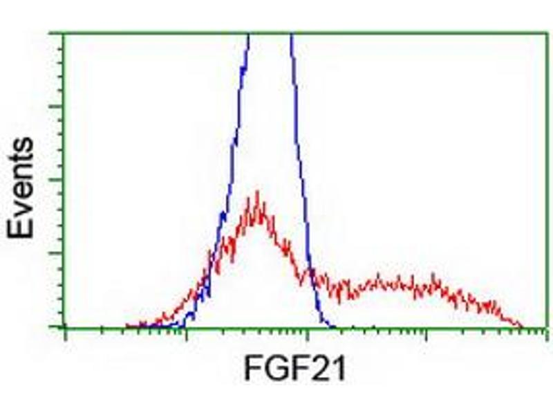 Flow Cytometry (FACS) image for anti-FGF21 antibody (Fibroblast Growth Factor 21) (AA 29-209) (ABIN2454615)