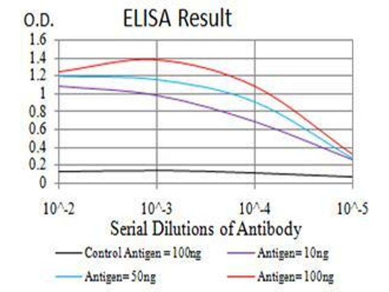 ELISA image for anti-Lamin B2 (LMNB2) (AA 401-600) antibody (ABIN4880841)