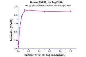 Image no. 2 for Tumor Necrosis Factor Receptor Superfamily, Member 1B (TNFRSF1B) (AA 23-257) (Active) protein (His tag) (ABIN2181842)
