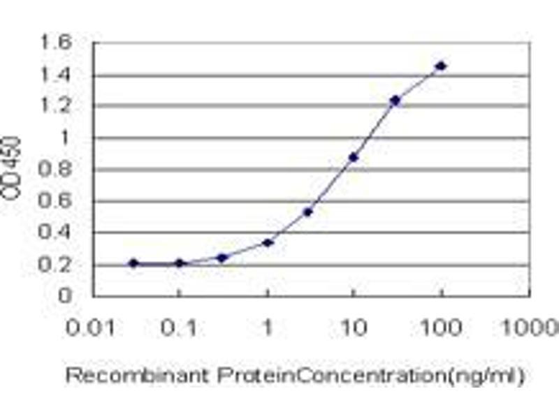 Immunohistochemistry (IHC) image for anti-T (AA 222-321) antibody (ABIN394390)