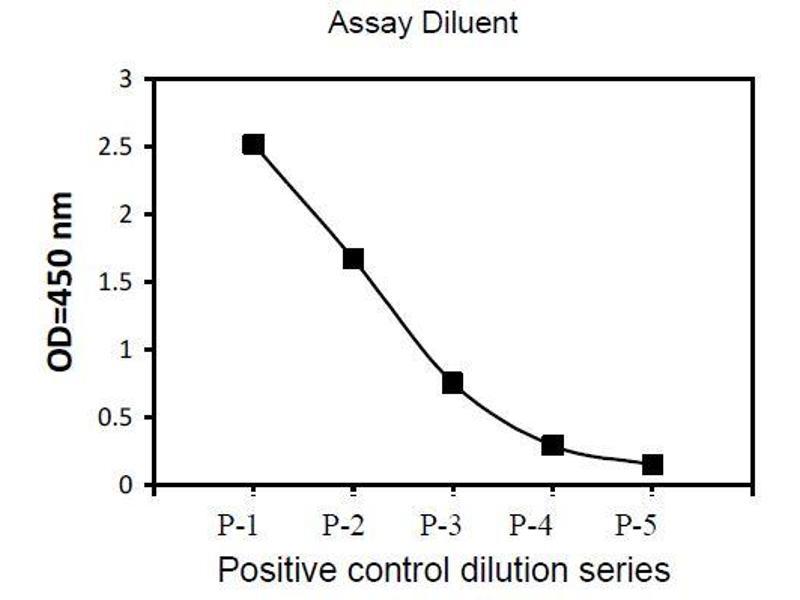 Bruton Agammaglobulinemia tyrosine Kinase (BTK) ELISA Kit (2)