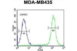 Flow Cytometry (FACS) image for anti-CA026 (AA 286-314), (N-Term) antibody (ABIN950987)
