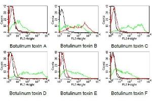 Flow Cytometry (FACS) image for anti-Botulinum Neurotoxin Type B (BoNT/B) antibody (ABIN179725)