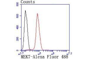 Flow Cytometry (FACS) image for anti-Mitogen-Activated Protein Kinase Kinase 7 (MAP2K7) (AA 400-500) antibody (ABIN5950426)