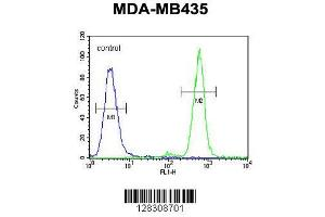 Flow Cytometry (FACS) image for anti-Transmembrane Anterior Posterior Transformation 1 (TAPT1) (AA 530-558), (C-Term) antibody (ABIN654785)