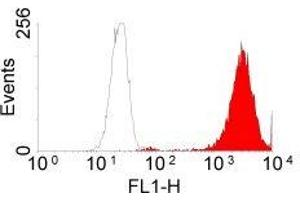 Flow Cytometry (FACS) image for anti-Epidermal Growth Factor Receptor (EGFR) antibody (ABIN153570)